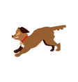 flat angry roaring dog pet icon vector image