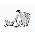 Hand drawn with garlic vector image