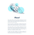 mussel seafood hand drawn vector image