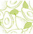Outline seamless pattern with avocado vector image vector image