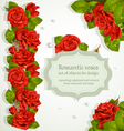 Red roses bouquet background vector image vector image