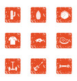seedling icons set grunge style vector image vector image
