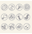 Set of berries icons vector image vector image
