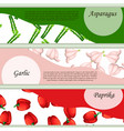 vegetables background banner design vector image