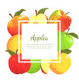 apples banner template with place for text farm vector image vector image