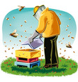 beekeeper takes care of his hive vector image vector image