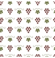 Bunch of grapes seamless pattern vector image vector image