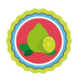 fresh fruit product seal vector image vector image