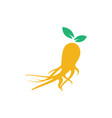 ginseng icon design template isolated vector image