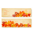 set of two nature banners with colorful autumn vector image vector image