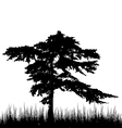 Tree and grass in silhouette are isolated on white vector image vector image