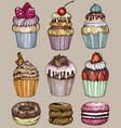 cakes and cupcakes bakery set vector image