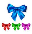 colorful silk bow set decoration collection of vector image