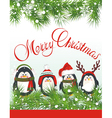 Cute penguins vector image vector image