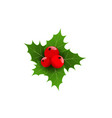 realistic 3d christmas berries and green leaf vector image vector image