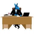 blue donkey democrat sitting in office animal vector image vector image