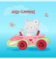 cute cartoon cat in car vector image vector image