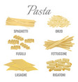 pasta types spaghetti and orso set vector image vector image