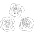 Set of three sketches of roses vector image