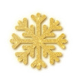 shine golden snowflake covered with glitter on vector image vector image