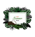 various exotic leaves with horizontal banner on vector image vector image