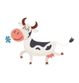 Spotted cow walking with eyes closed and daisy in vector image