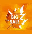 autumn new season of sales and discounts deals vector image vector image