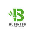 bamboo with initial letter b logo vector image