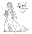 bride holding bouquet vector image