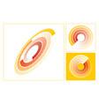 color flow vector image vector image