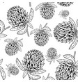 hand drawn clover flower pattern vector image vector image