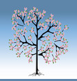 peach tree in bloom vector image vector image