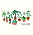 urban jungle with trendy vector image