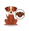 veterinary dog care icon vector image vector image