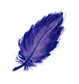 watercolor lilac feather vector image vector image