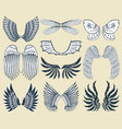 wings isolated animal feather pinion bird freedom vector image vector image