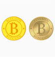 bitcoin set with flat and realistic gold coins vector image
