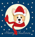 corgi santa claus with red scarf on blue vector image