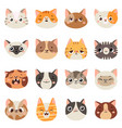 cute cats faces happy animals funny kitten vector image vector image