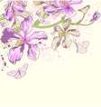 Decorative background with orchids vector image vector image