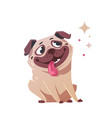 happy pug-style flat vector image