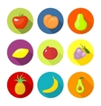 set round icons with fruit vector image vector image