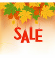 autumn sale banner sale text in red color hanging vector image