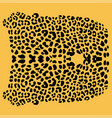 background of leopard skin pattern vector image vector image
