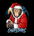 christmas santa claus cute chimpanzee monkey vector image vector image