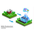 dairy product delivery stages milk can processing vector image vector image