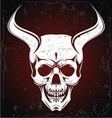 Devil Skulls vector image vector image