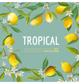 Lemon Flowers and Leaves Exotic Graphic vector image vector image