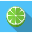 Lime flat icon vector image