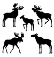 moose silhouette vector image vector image